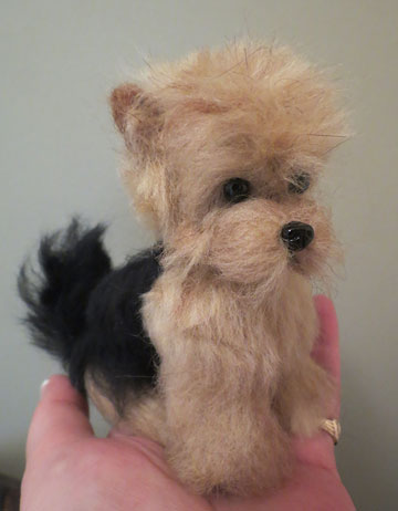 Norwich Terrier Black And Tan