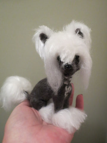 Chinese Crested charcoal gray & white