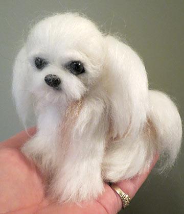 Japanese Miki Dog | Dog Breeds Picture