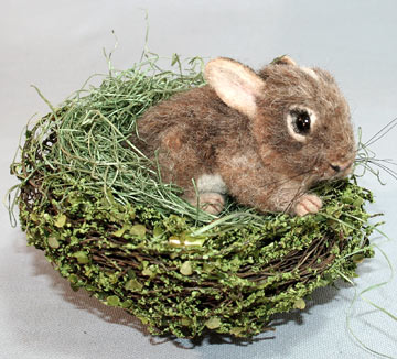 Baby Cottontail Bunny In Nest