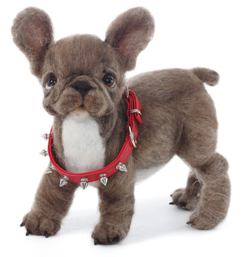 Spike, French Bulldog Puppy