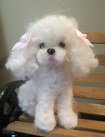 Poodle White, Curly
