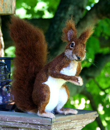 Red Squirrel Standing