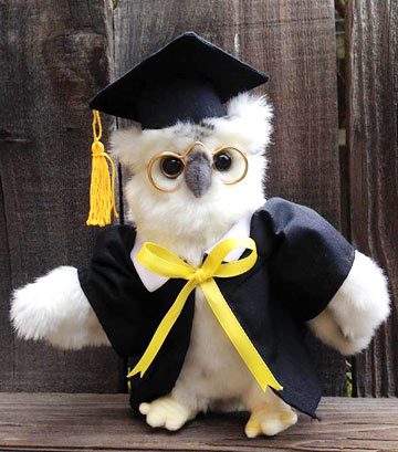 White Graduation Owl 7in