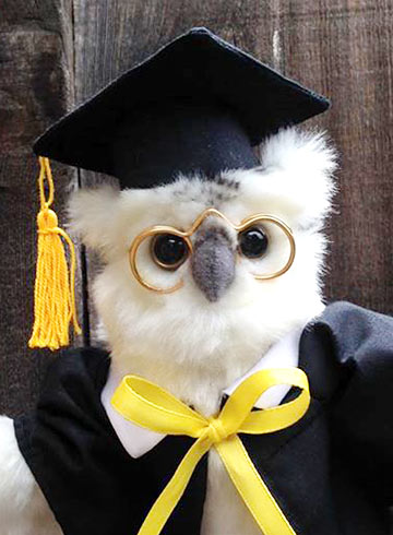 White Graduation Owl 7in by Hansa