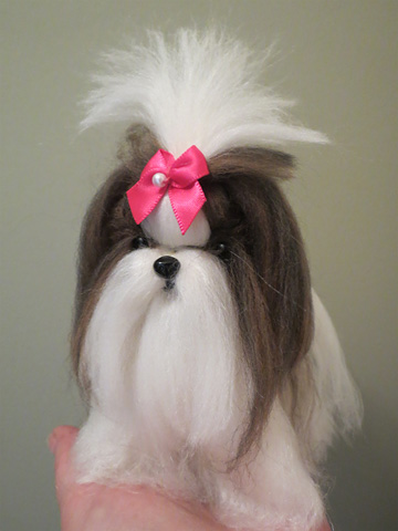 Long Coat Shih Tzu