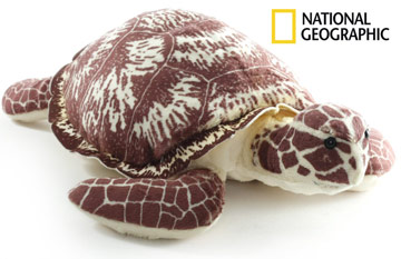 National Geographic Kari Hawksbill Turtle EAN 068287