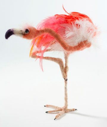 Pink Flamingo Standing On One Leg