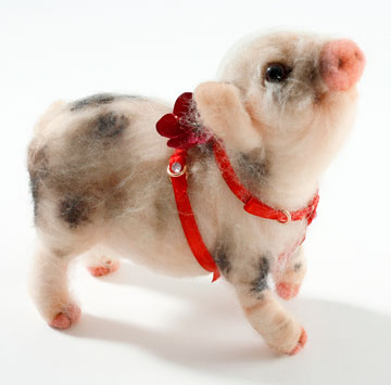 Blossom Pot-Bellied Pig