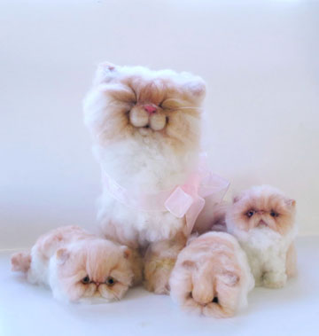 Peach Persian And Her Kittens