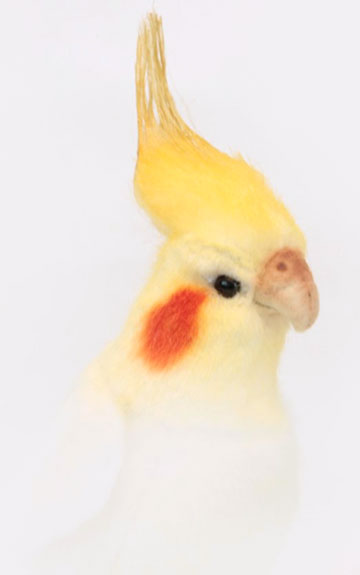 Cockatiel, White 6457 by Hansa