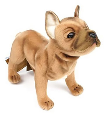 French Bulldog, Beige 6597
