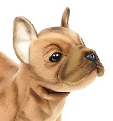 French Bulldog, Beige 6597 by Hansa