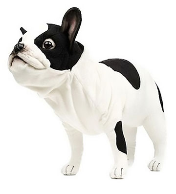 French Bulldog, Black And White 6601