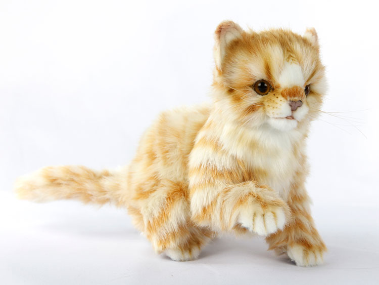 Kitten, Ginger 6492 by Hansa