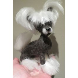 Chinese Crested Charcoal Gray White